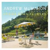 Andrew Mcmahon In The Wilderness Upside Down Flowers Explicit Version