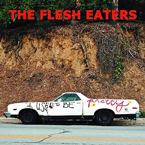 The Flesh Eaters I Used To Be Pretty 2lp W Dl Code