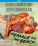 Female On The Beach Crawford Chandler Blu Ray Nr