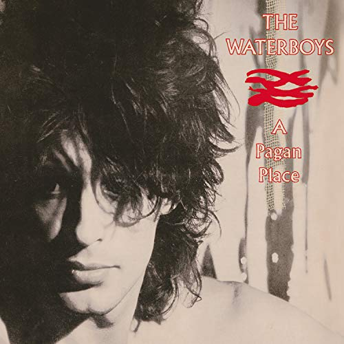 the-waterboys-a-pagan-place