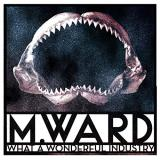 M. Ward What A Wonderful Industry (cloudy Clear Vinyl) Cloudy Clear Vinyl