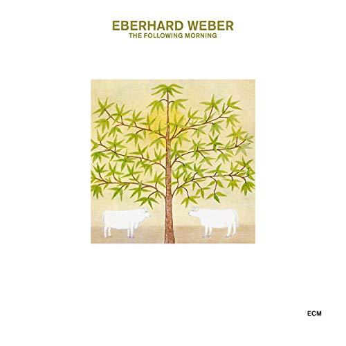 Eberhard Weber/The Following Morning