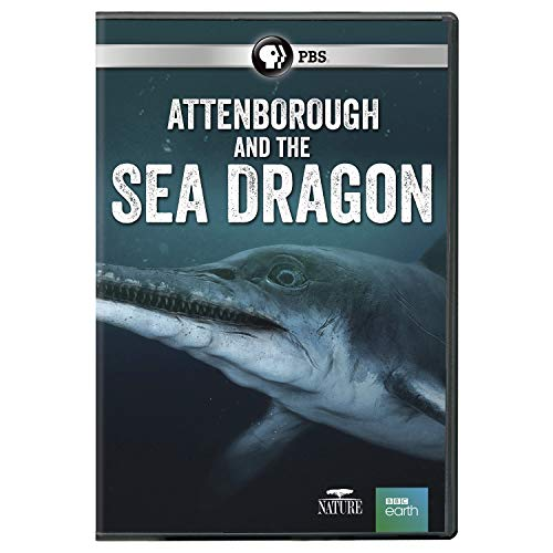 nature-attenborough-the-sea-dragon-pbs-dvd-pg