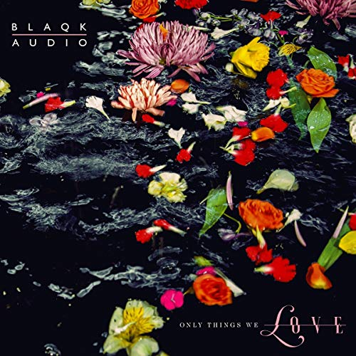 Blaqk Audio Only Things We Love Flower Picture Disc