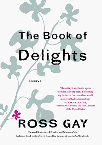 ross-gay-the-book-of-delights-essays