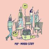 Pup Morbid Stuff Pink & Oxblood Vinyl Indie Exclusive