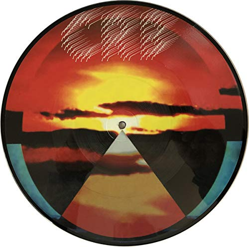 Chris Robinson Brotherhood Dice Game & Let It Fall Picture Disc Rsd 2019