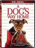 A Dog's Way Home Judd Hauer King Olmos DVD Dc Pg
