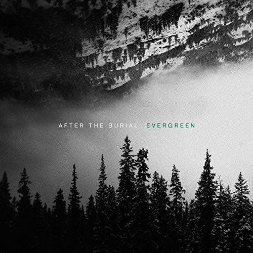 after-the-burial-evergreen