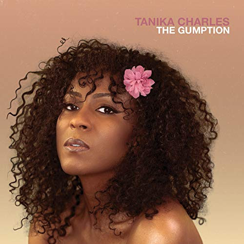 Tanika Charles The Gumption .
