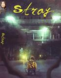 Stray Fukuhara Woods DVD Nr