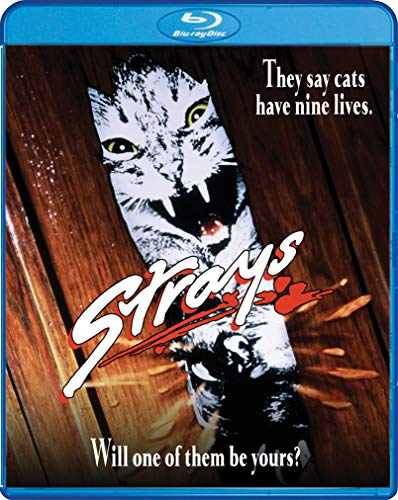 Strays (1991) Quinlan Busfield Blu Ray R