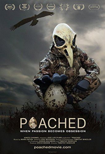 Poached/Poached