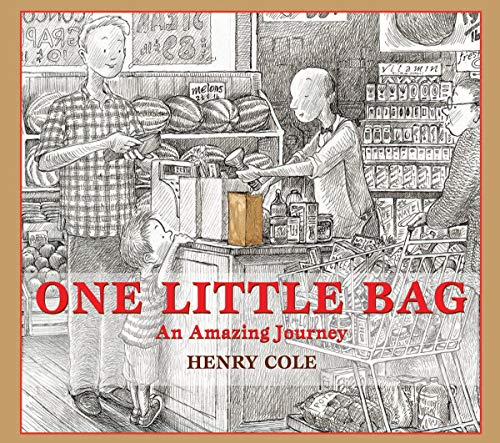 henry-cole-one-little-bag-an-amazing-journey