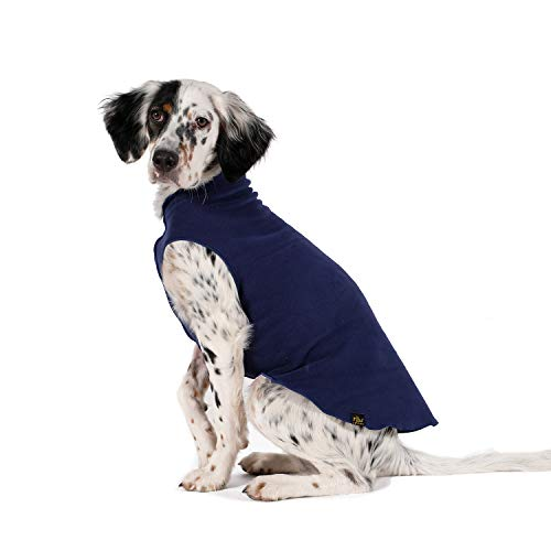 gold-paw-fleece-navy-blue