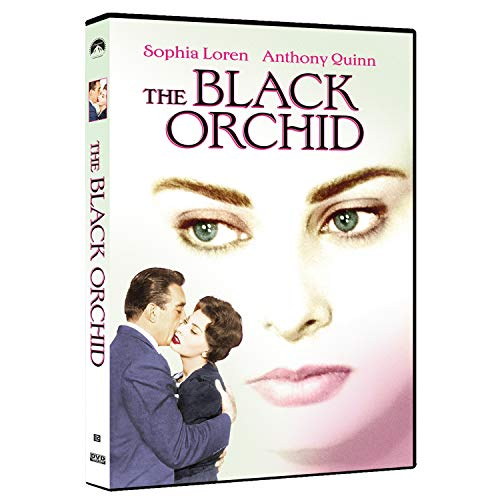 black-orchid-loren-quinn-balin-made-on-demand-this-item-is-made-on-demand-could-take-2-3-weeks-for-delivery