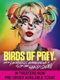 Birds Of Prey And The Fantabulous Emancipation Of One Harley Quinn Robbie Winstead Perez DVD R