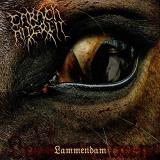 Carach Angren Lammendam 2 Lp On Swamp Green Vinyl Ltd. 300