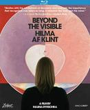 Beyond The Visible Hilma Af Klint Hilma Af Klint Blu Ray Nr