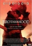 Brotherhood Life In The Fdny Brotherhood Life In The Fdny Clr Ws Nr