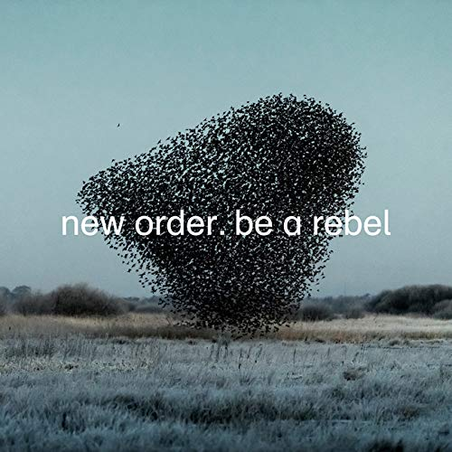 new-order-be-a-rebel-dove-grey-vinyl