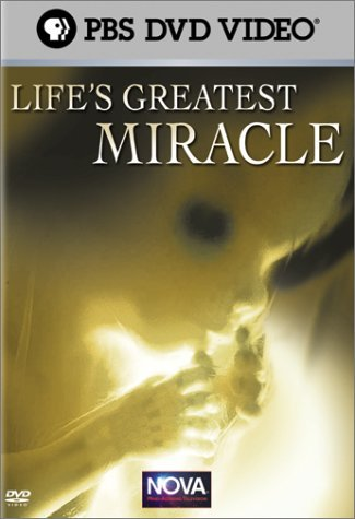 nova-nova-lifes-greatest-miracle-nr