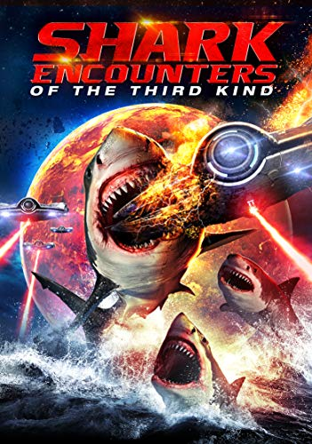 shark-encounters-of-the-third-shark-encounters-of-the-third