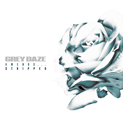 grey-daze-amendsstripped