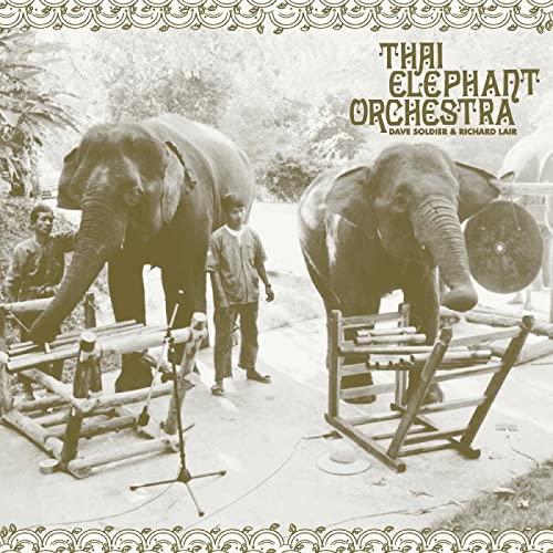 thai-elephant-orchestra-thai-elephant-orchestra-lp7-ltd-1350-rsd-2021-exclusive