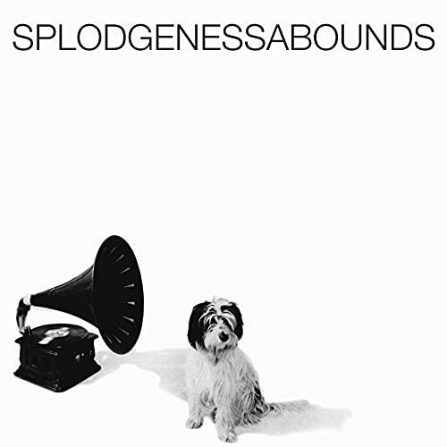 splodgenessabounds-splodgenessabounds-rsd-2021-exclusive