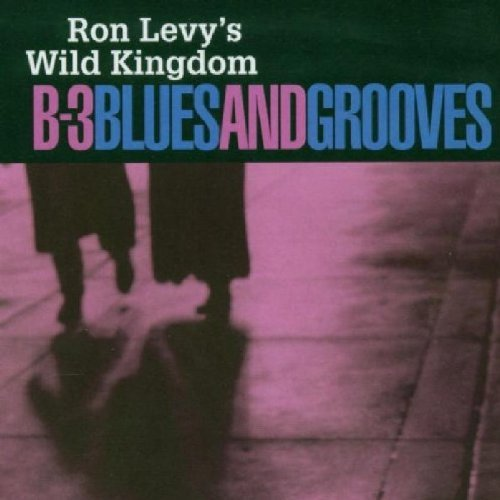 ron-levy-b-3-blues-grooves