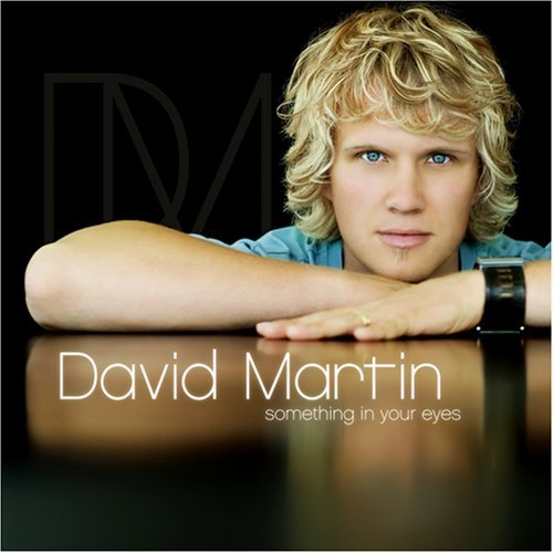 David Martin Something In Your Eyes