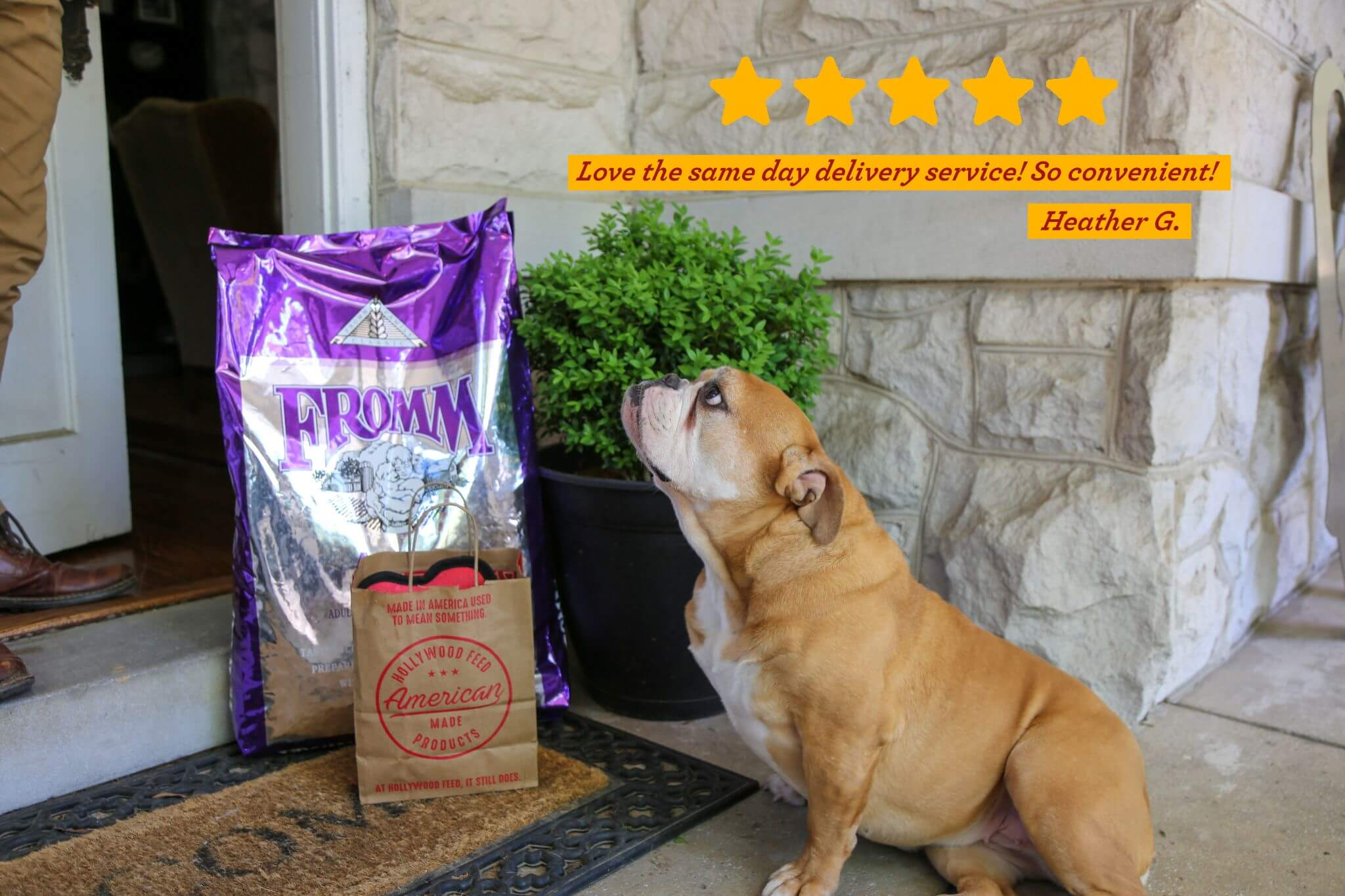 Dog Sitting outside with Same Day Delivery Items. Love the same day delivery service! So Convenient! - Heather G