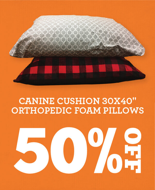 Fifty Percent off Canine Cushion 30 by 40 inch orthopedic foam pillows.