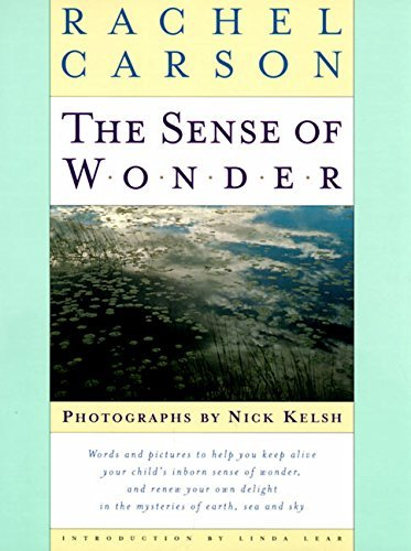 Rachel Carson The Sense Of Wonder Stories Of Work