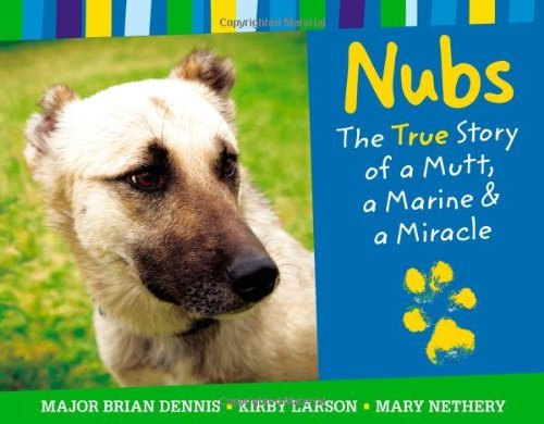 Brian Dennis Nubs The True Story Of A Mutt A Marine & A Miracle