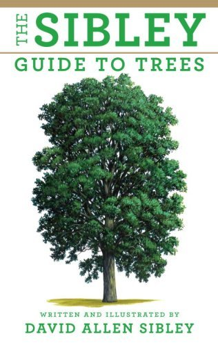 david-allen-sibley-the-sibley-guide-to-trees