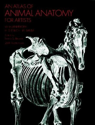 W. Ellenberger An Atlas Of Animal Anatomy For Artists 0002 Edition;
