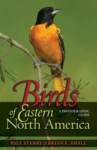 Paul Sterry Birds Of Eastern North America A Photographic Guide A Photographic Guide