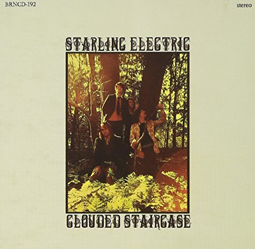Starling Electric Clouded Staircase