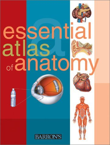 Parramon Studios Essential Atlas Of Anatomy