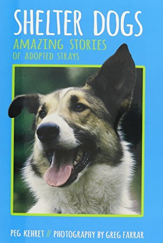 Peg Kehret Shelter Dogs Amazing Stories Of Adopted Strays