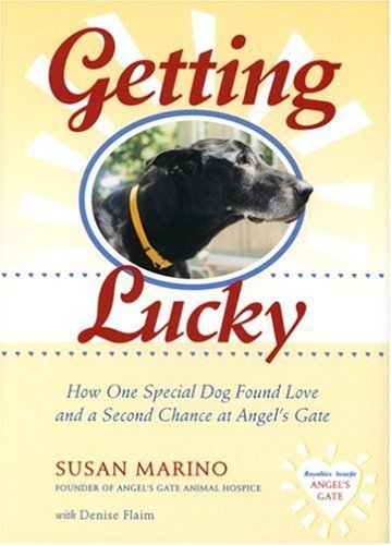 Susan Marino Getting Lucky How One Special Dog Found Love And