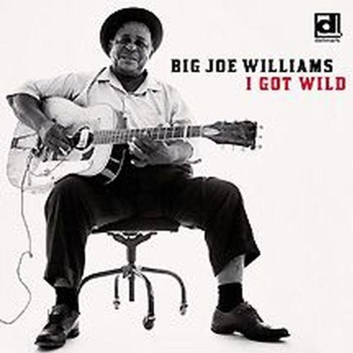 Big Joe Williams I Got Wild
