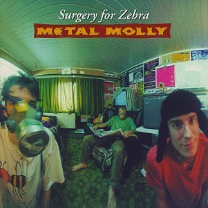 Metal Molly Surgery For Zebra