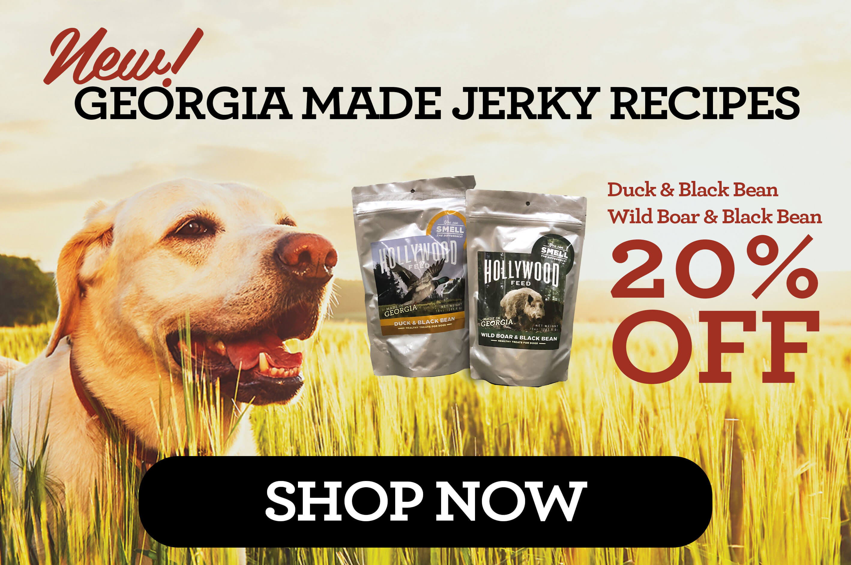 Hollywood Feed | Your Local Pet Food Experts