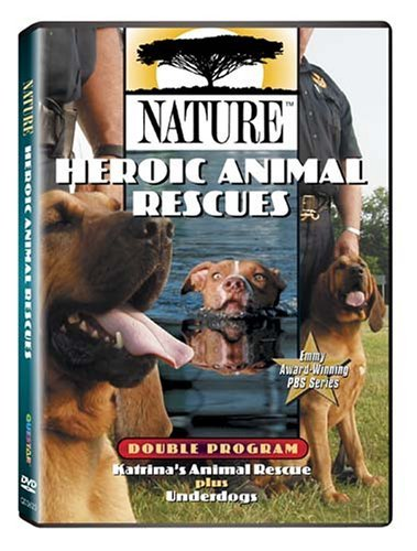 Heroic Animal Rescues Nature Nr