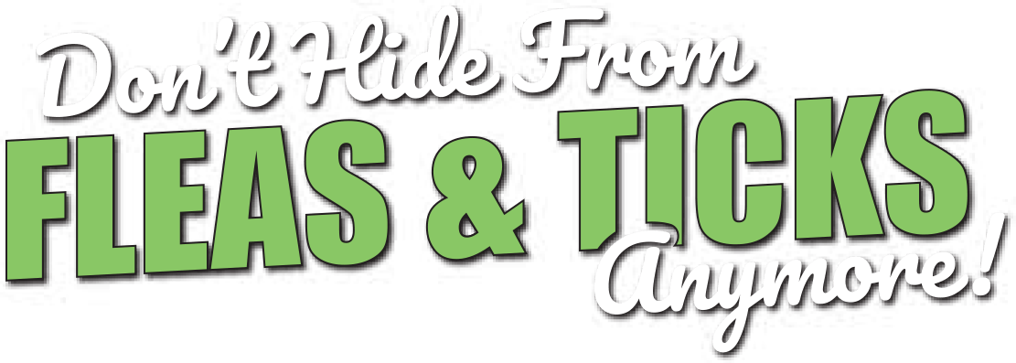 Don't Hide From Fleas & Ticks Anymore