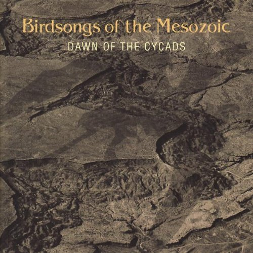 Birdsongs Of The Mesozoic Dawn Of The Cycads