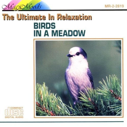 Magic Moods Birds In A Meadow Magic Moods